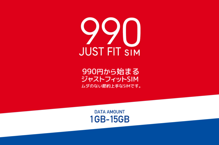 990JUST FIT SIM
