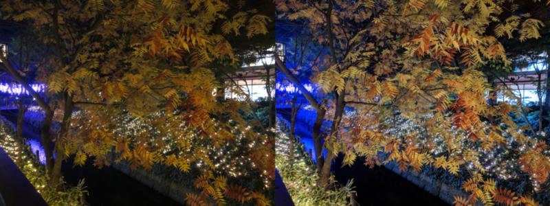 夜景モード比較 高揚した樹木