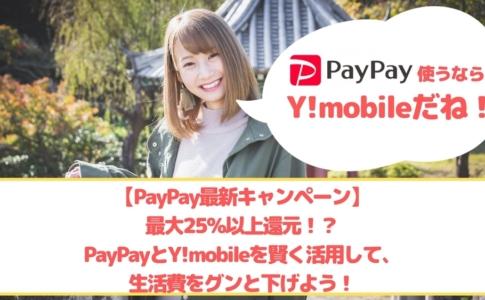 PayPay最新キャンペーン ゆりちぇるアイキャッチ